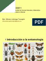 Clase 01 Entomología  (introducción a la entomologia)