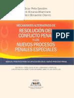 dpp0403.pdf