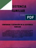 13.- Asistencia Familiar