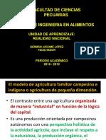 Cadena Agroalimentaria- Banano (3)-1