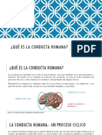 Conducta Humana