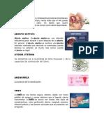 Terminos de Enfermeria en El Embarazo