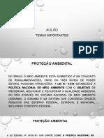AULÃO TEMAS IMPORTANTES NPC1 2018.2.pdf
