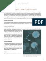 Morfologia, Fisiologia e Classificação dos Fungos.pdf