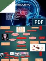 Exposicion Sistema Endocrino 1