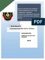 seguridad ciudadana informe.docx