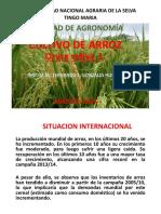 arrozprimeraparte-150714204422-lva1-app6892.pdf