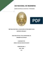 MEOR en Perú.pdf