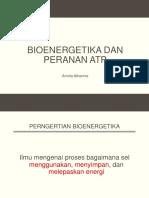 HO2 Bioenergetika