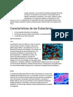 Tipos de Eubacterias