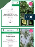 2018_Catalogo_Plantas_Vivero.pdf
