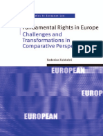 Fundamental_Rights_in_Europe.pdf