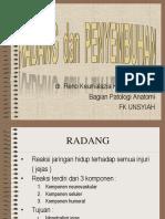 RADANG(1)