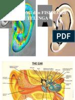 Anatomi Telinga.ppt