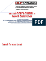 14 Salud Ocupacional Salud Ambiental