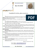 Cum Sa Cream Un Fisier PDF Foarte Mic