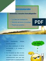 La idea de investigación - Resumen v2 UNMSM.pptx