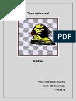 Tema Opcion real.pdf