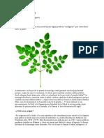 358980836 Hombre Economia y Estado Version Final Completa PDF