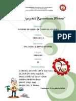INFORME_GEOLOGÍA_LLACANORA-FINAL.docx
