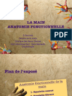 2019-2 Anat Fonctionnelle