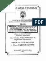 Analisis_Sist_Prod. PALTOS_Luricocha_Ayacucho_Te.pdf