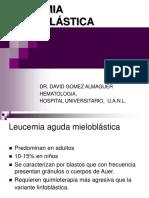 LEUCEMIA-aguda-mieloblástica