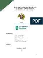 AGROFRUIT-ORGANIC-TATI.docx