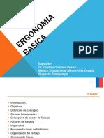 Ergonomia Básica REV