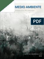 CONTAMINACION RIO CORALAQUE.docx