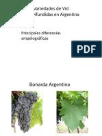 variedadesdevid.pdf