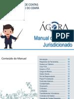 Manual_Usuario_Jurisdicionado_v12.pdf
