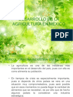 Economia Agricola Mexico