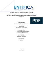 FINAL_EVALUACION AMBIENTAL PRELIMINAR.pdf