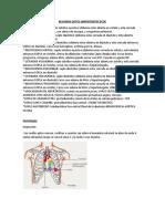 Medicina interna ECOE resumen
