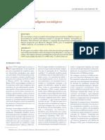 Paradigmas en sociología