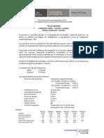 Ayuda Memoria.pdf