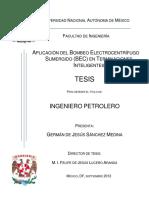 Tesis BEC UNAM_Sistemas Artificiales de Produccion .pdf