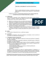 PLAN DE SEGURIDAD EN OBRA.docx