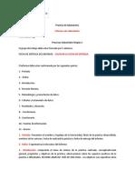 Practica de laboratorio. 2014-1.pdf