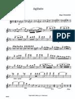 IMSLP317411 PMLP512939 Riesenfeld Agitato Flute