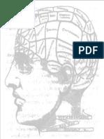 hemisferios cerebrais ppt