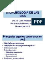 Manual Definiciones Vigilancia Epidemiológica IAAS