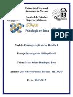 Investigación Bibliográfica II.docx
