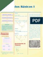 Guía 1 - Cálculos Básicos