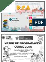 PCA - SEXTO GRADO.docx