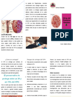 Qué es el VPH