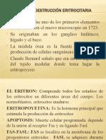 PRODUCCIÓN Y DESTRUCCIÓN ERITROCITARIA
