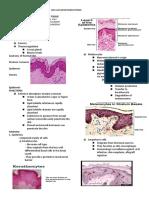 Skin & Subcutaneous Tissue