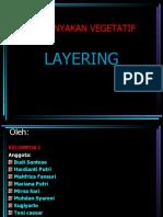 an Vegetatif Layering